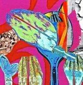 translucent-collage